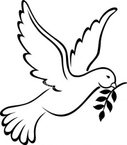 ~ Peace dove ~
